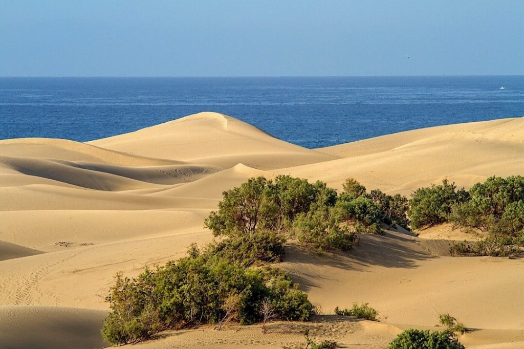 Maspalomas Dunes, Canary Islands